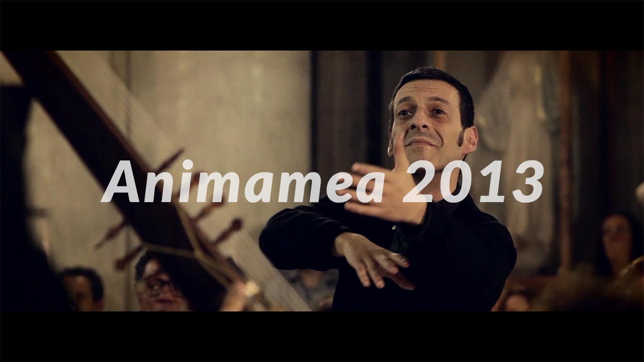 Animamea 2013 - il video
