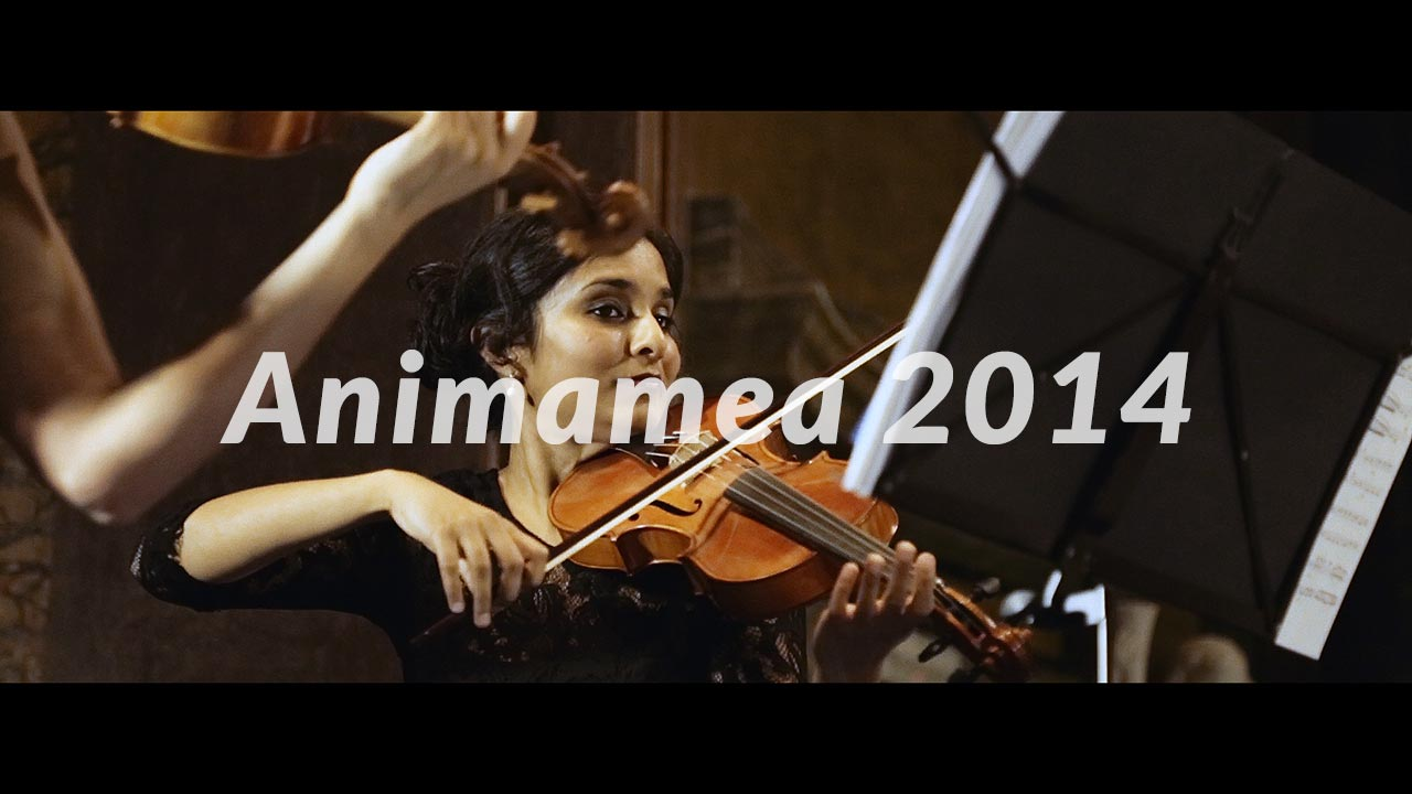 Animamea 2014 - il video